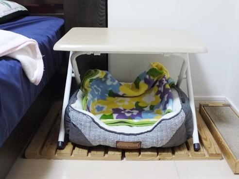 その下に猫ベッド設置.JPG
